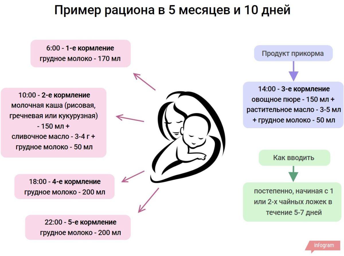 рацион детей в 5 месяцев и 10 дней